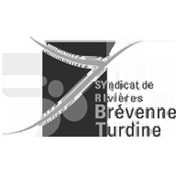 logo_syribt